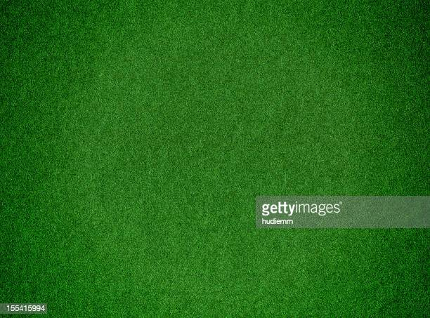 Green grass background textured