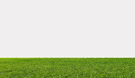 Green grass field, isolated on white background 689952190