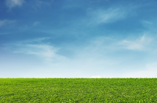 Green grass field with blue sky and white clouds background 689952508