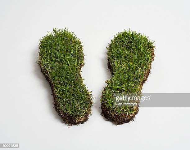 Green grass footprints
