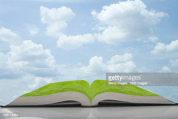 Green grass growing in pages of book