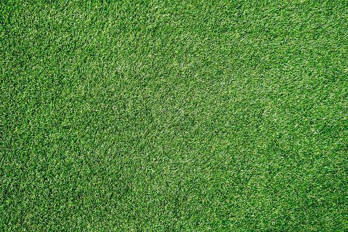 Green grass texture background Soccer field 950631272