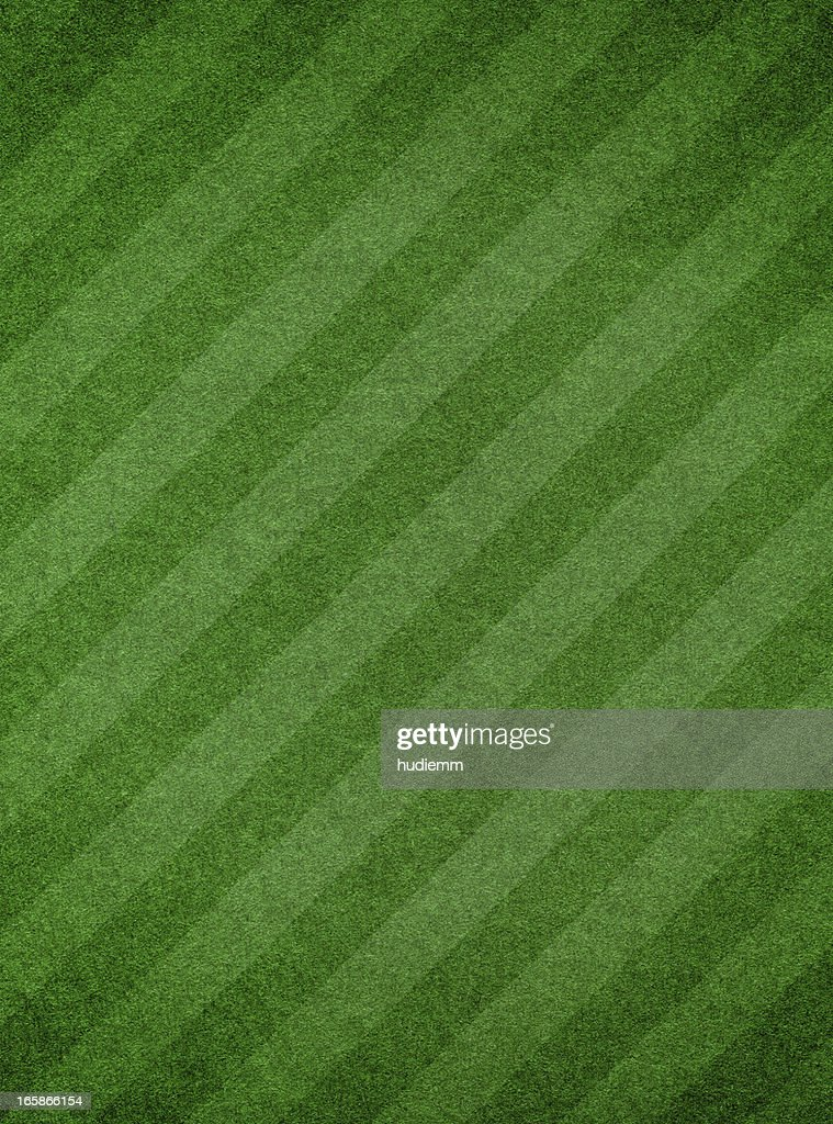 Green grass textured background with stripe : Stock Photo