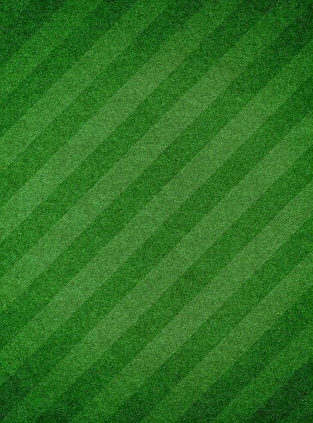 Grass texture with stripe
