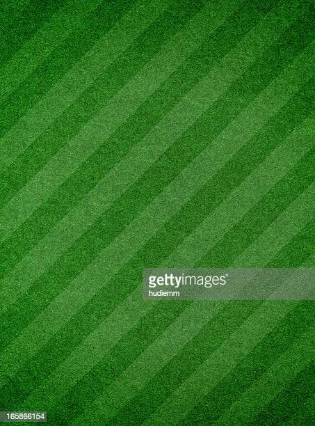 Green grass textured background with stripe