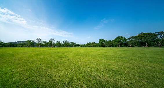 Green grassland and blue sky - gettyimageskorea