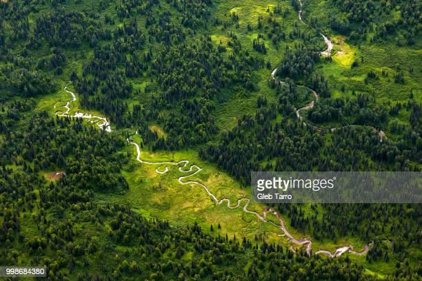 green heart of alaska - paisajes de alaska fotografías e imágenes de stock