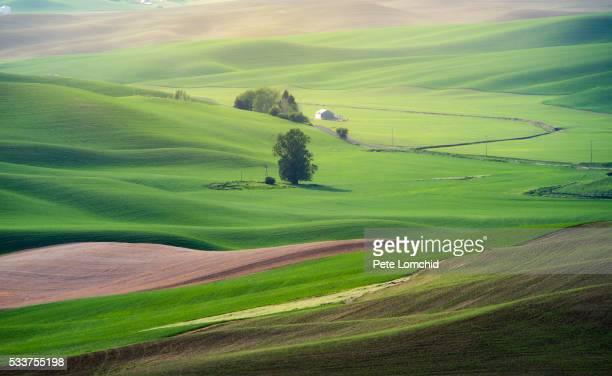 green hill road