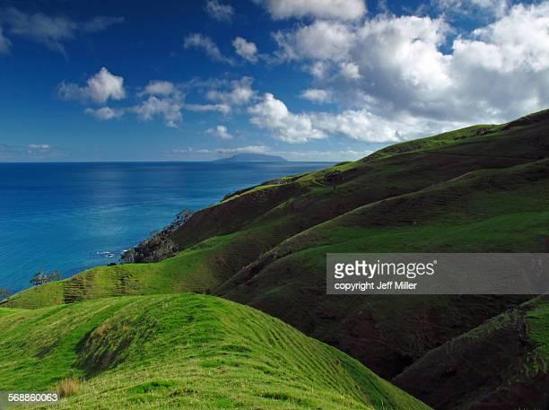 Green hills Coromandel Peninsula, New Zealand