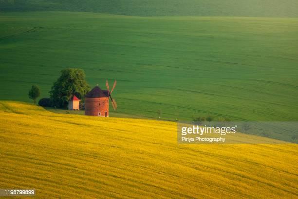 green hills from moravia czech - 風車塔 ストックフォトと画像