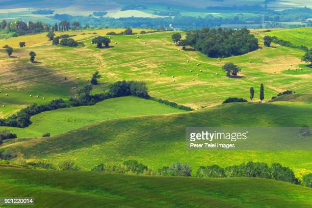 Green hills in Tuscany, Italy