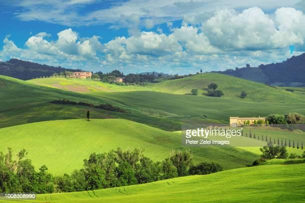 green hills in tuscany - paesaggio collinare foto e immagini stock