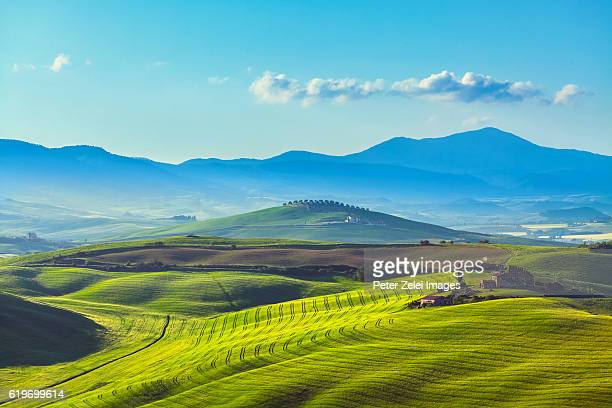 Green hills in Val d'Orcia, Tuscany, Italy