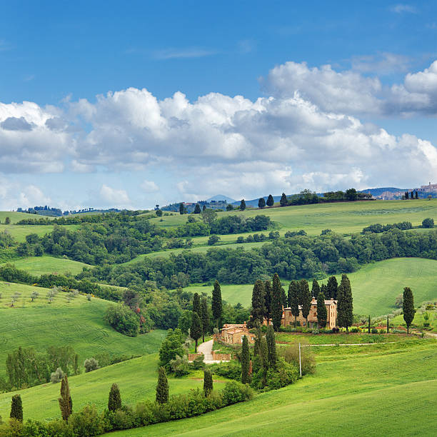 Green Hills Of Tuscany In The Spring Wall Art