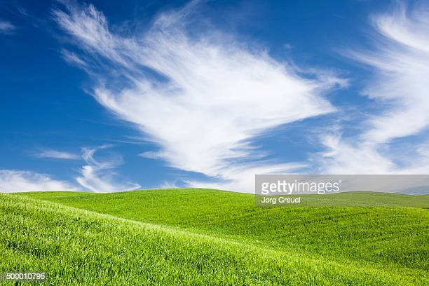 green hills - hill stock pictures, royalty-free photos & images