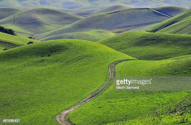 green hills with road - rolling landscape stock pictures, royalty-free photos & images