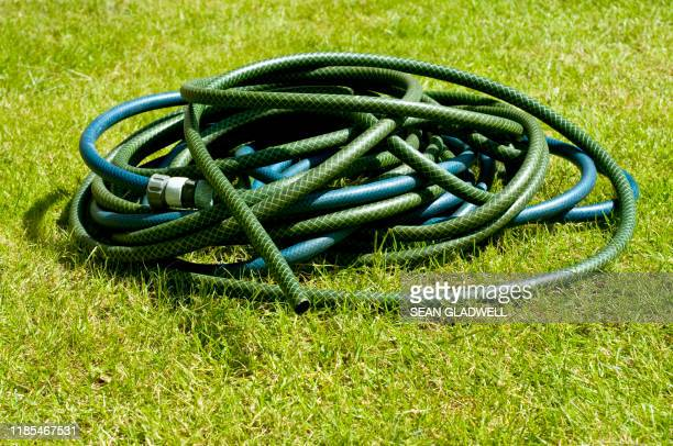 green hose pipe - hose stock pictures, royalty-free photos & images