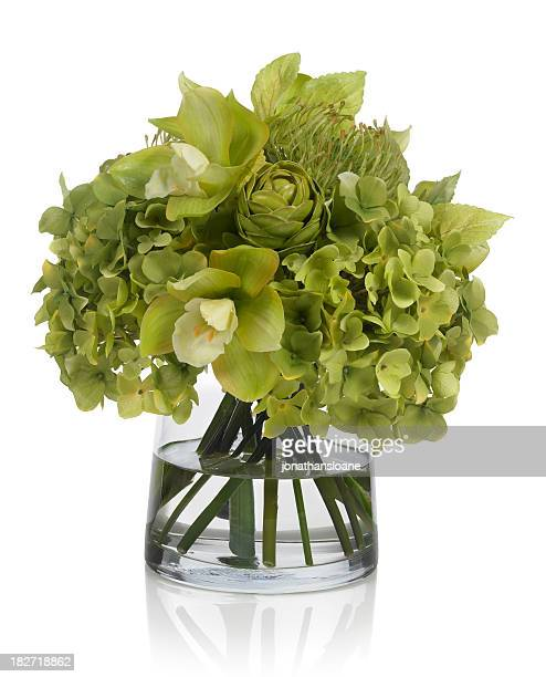 Green hydrangea and orchid bouquet on white background