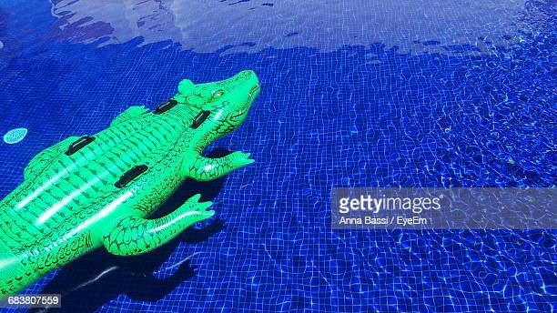 Green Inflatable Crocodile Floating On Swimming Pool During Sunny Day