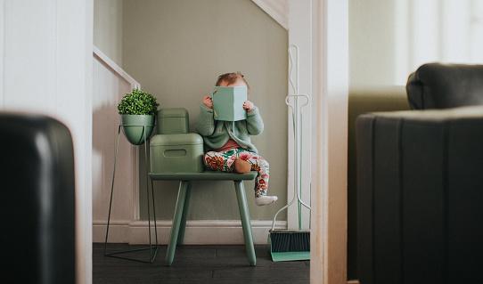 Green interior - gettyimageskorea