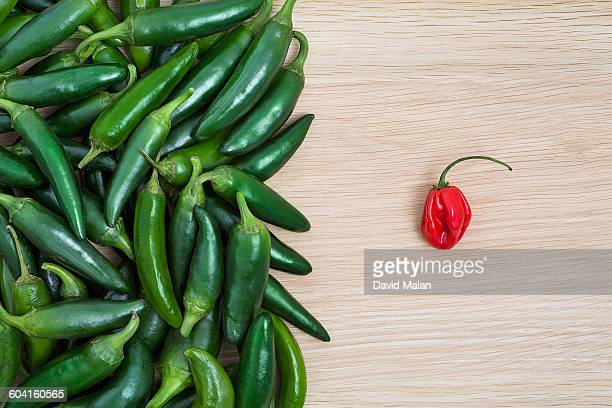 Green Jalapeño peppers opposite one red Habanero