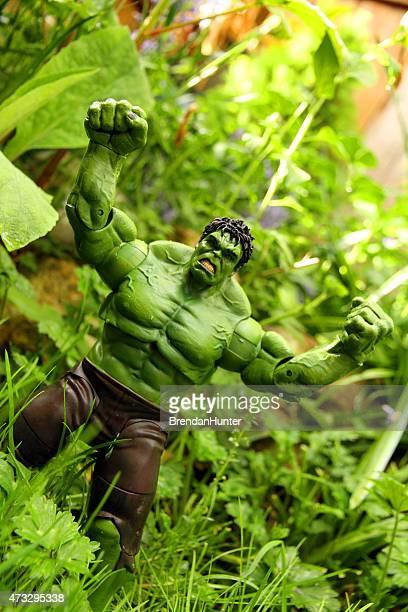 verde jungle - hunter green fotografías e imágenes de stock