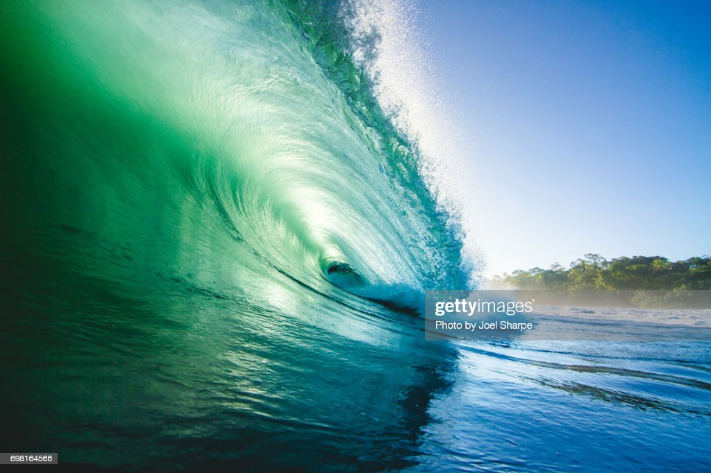 Green Jungle Wave : Stock Photo