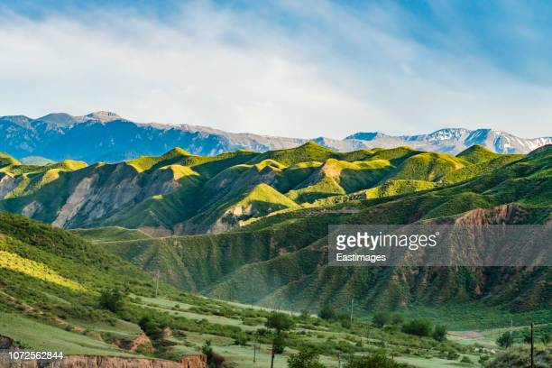 green land of tianshan mountain,xinjiang,china. - tien shan mountains stock pictures, royalty-free photos & images