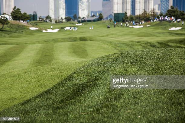 green landscape at golf course - songdo ibd stock pictures, royalty-free photos & images