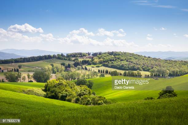 green landscape - siena italy stock photos and pictures