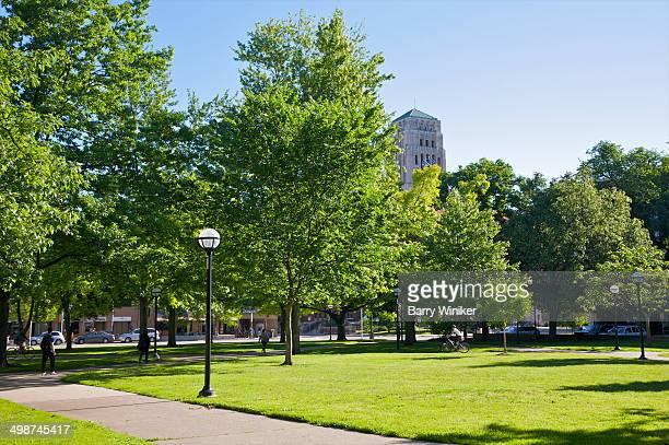 green lawn and trees at umichigan campus - アナーバー ストックフォトと画像