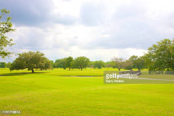 green lawn and trees in city park, new orleans - new orleans city stock pictures, royalty-free photos & images