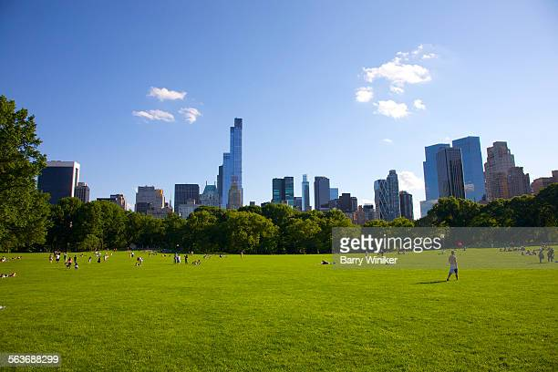 Green lawn of Central Park with office towers, NYC