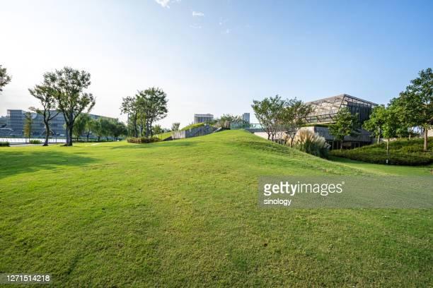 green lawn with city skyline - openbaar park stockfoto's en -beelden