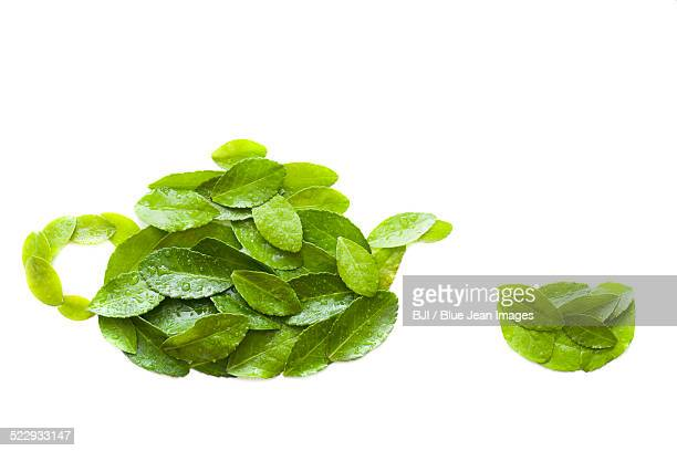 Green leaves forming shape of teapot and tea cup