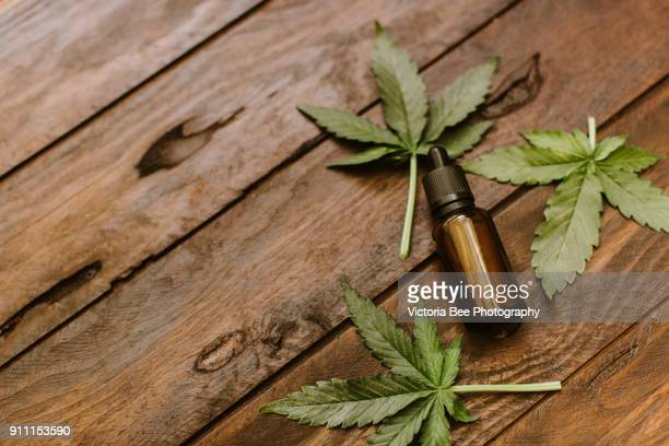 green leaves of medicinal cannabis with extract oil - cannabis oil stock photos and pictures