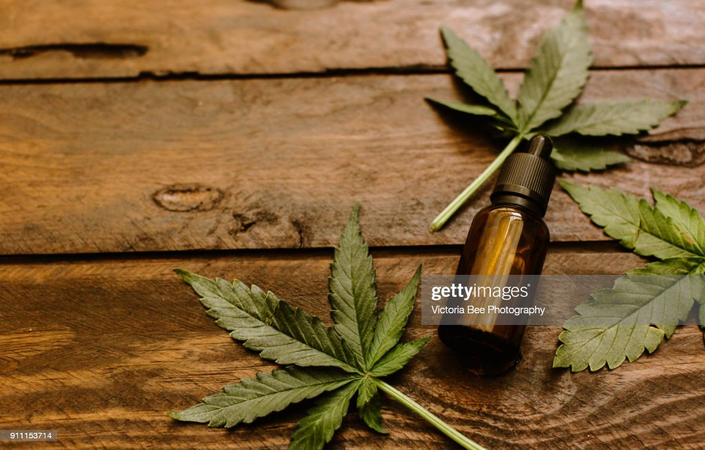 Green leaves of medicinal cannabis with extract oil : Foto de stock