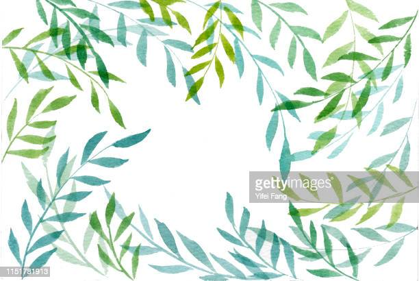 green leaves on white background - illustration stock pictures, royalty-free photos & images