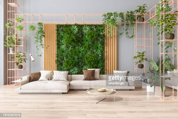 groene woonkamer met verticale tuin, kamerplanten, beige kleurenbank en parketvloer - weelderige plantengroei stockfoto's en -beelden