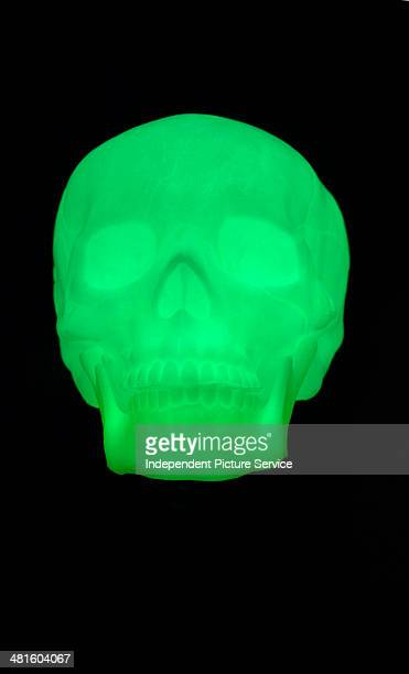 A green luminescent human skull glowing in the dark