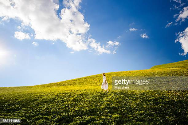 green meadow under the blue sky at the seceda summit in ortisei, dolomiti, italy. - under the skirt stock photos and pictures