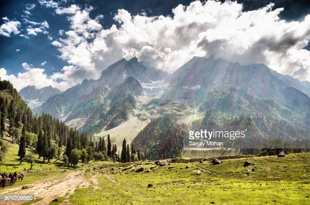 green meadow with mountains in background under cloudy sky, sonamarg, srinagar, kashmir, india - kashmir valley stock photos and pictures
