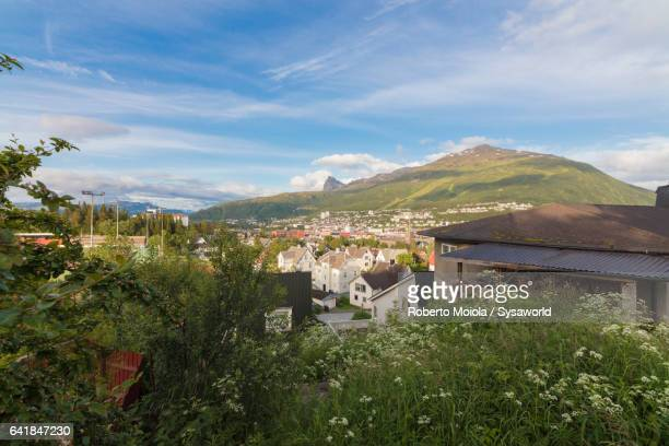 Green meadows frame the city of Narvik Norway