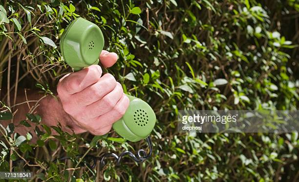 green mediation