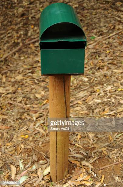 Green metal mailbox on a brown pine wood post