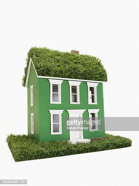 Green model home on grass with grass roof