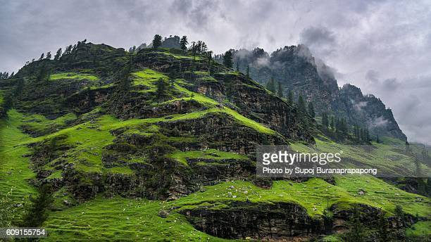Green Mountain in Manali on the way to Leh Ladakh,India