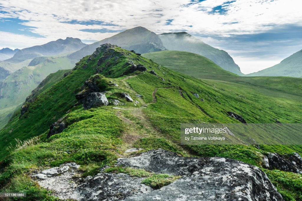 Green mountain range summer panorama, Lofoten Islands, Norway : Stockfoto