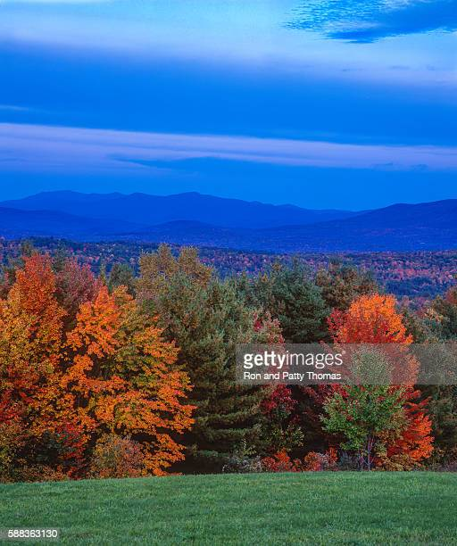 Green Mountains at dusk autumn foliage, VT(P)
