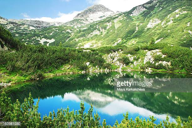 green mountains - pirin national park stock pictures, royalty-free photos & images